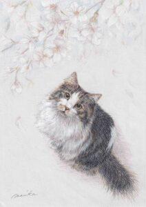 桜舞う 猫 色鉛筆